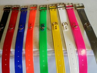 1.5-inch DayGlo Field Trial Competition dog collars with Small D Ring attached on top of the collar Ideal for identifying your dog in the field trail