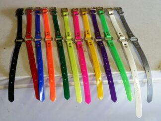 .75 inch-Ring n Center D Ring Dog Collar