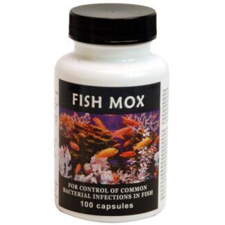 Fish Mox 250 mg Amoxicillin